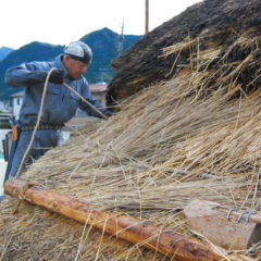 Replacing thatched roof