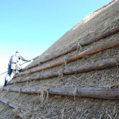 Thatched roof was finished.